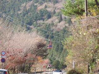 20101127_7.jpg